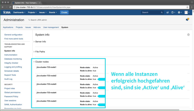 System Info - Cluster Nodes - Alle Aktiv